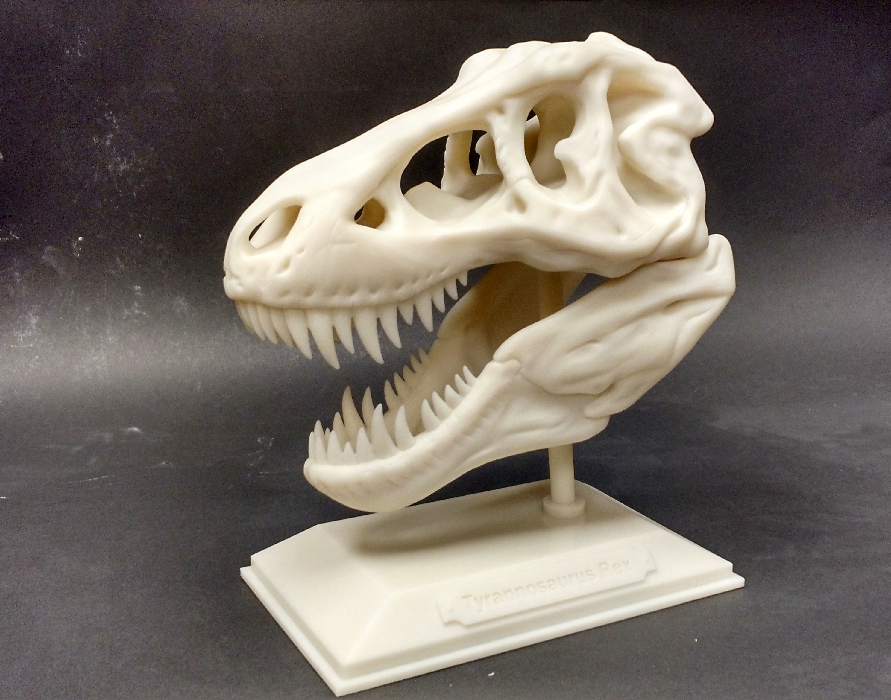 The 3D Printed T Rex In Honor Of Jurassic World Release Realize Inc